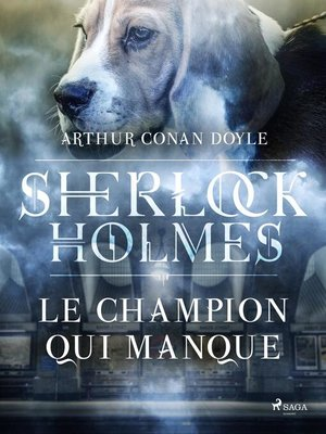 cover image of Le Champion qui manque